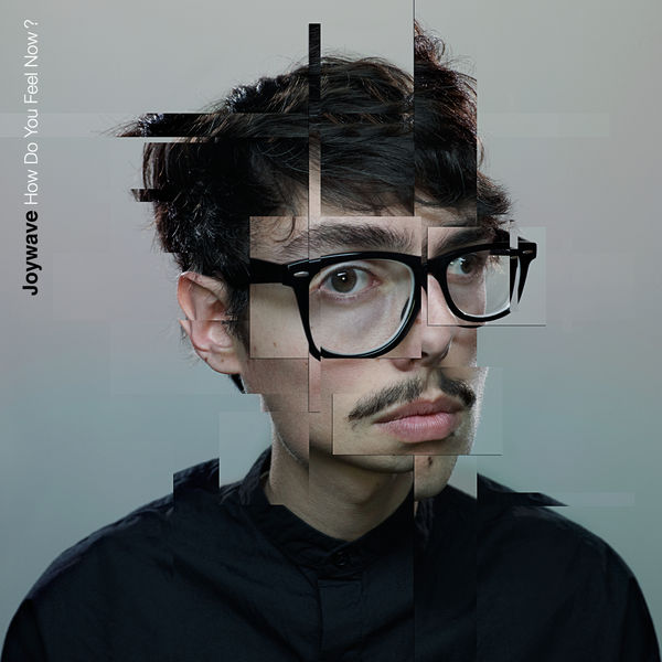 Joywave - How Do You Feel Now?