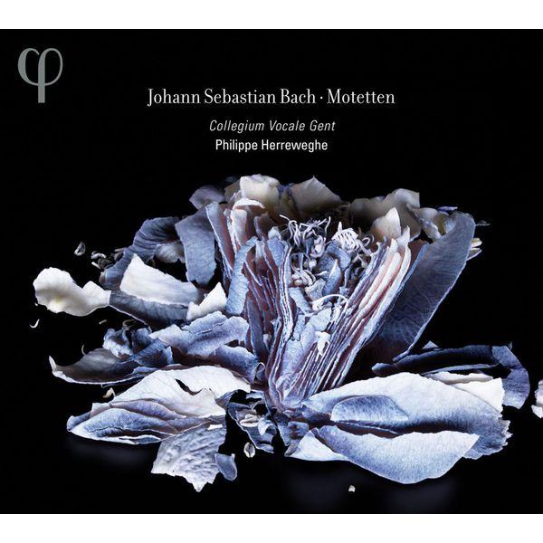 Philippe Herreweghe - Johann Sebastian Bach : Motets (Intégrale)