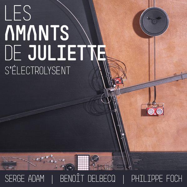 Serge Adam - Les amants de Juliette s'électrolysent