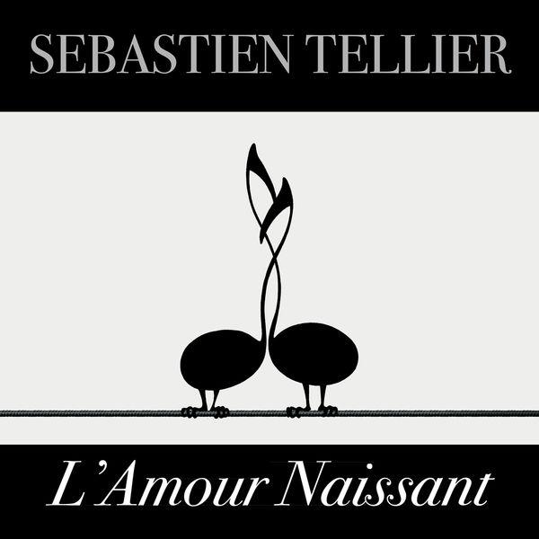 Sébastien Tellier - L'amour naissant - Single