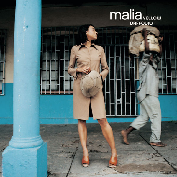 Malia - Yellow Daffowdils