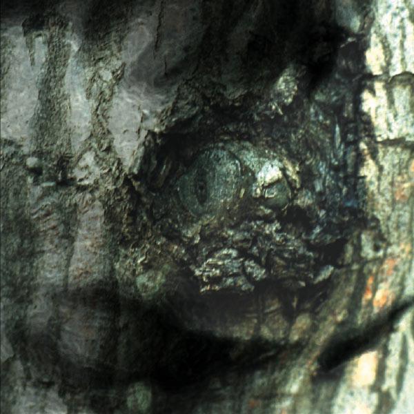 Yann Tiersen - The Waltz of the Monsters