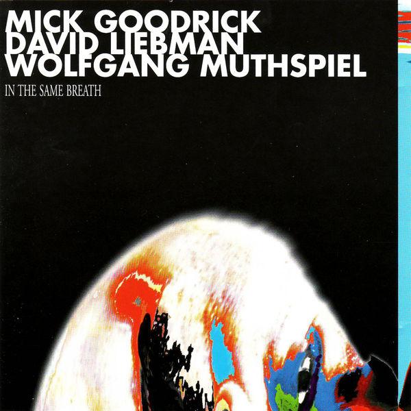 Mick Goodrick - In the Same Breath