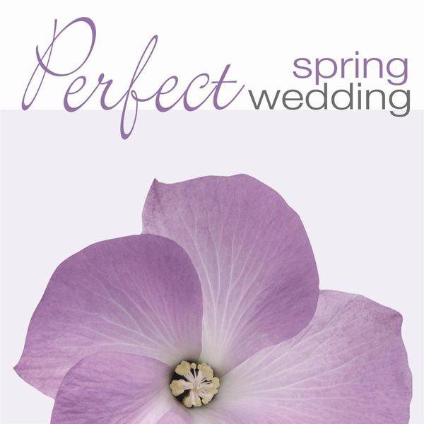 Takako Nishizaki - PERFECT SPRING WEDDING