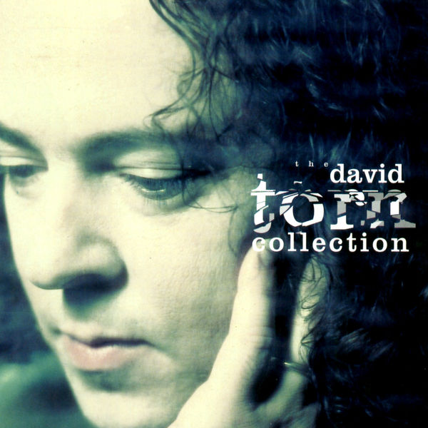David Torn - The David Torn Collection