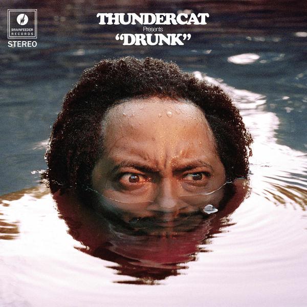 Thundercat Friend Zone