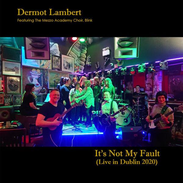 Dermot Lambert - It's Not My Fault
