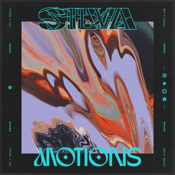 Silva - Motions