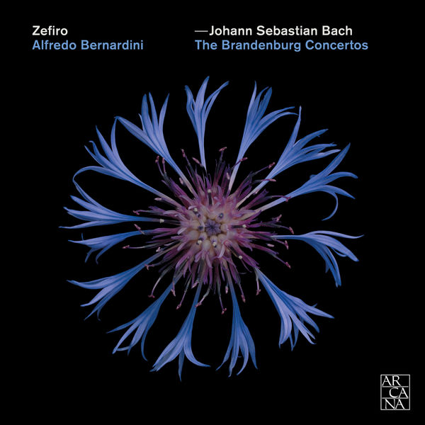 Alfredo Bernardini - Bach : The Brandenburg Concertos