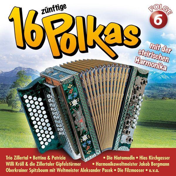 Various Artists - 16 zünftige Polkas mit der steirischen Harmonika Folge 6