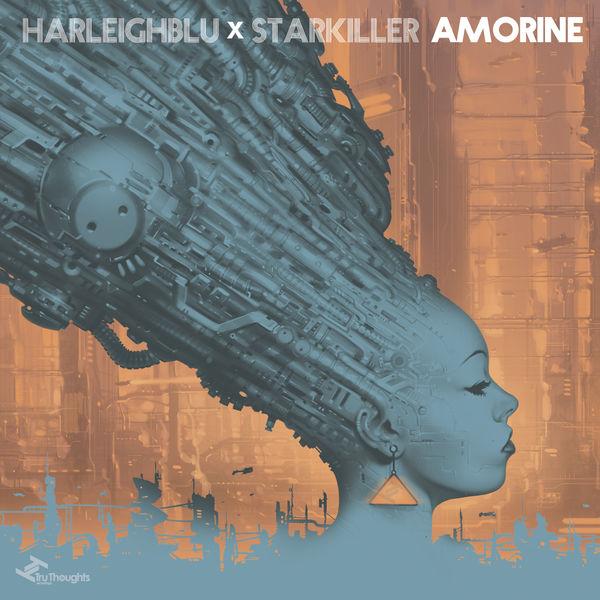 Harleighblu, Starkiller - Amorine
