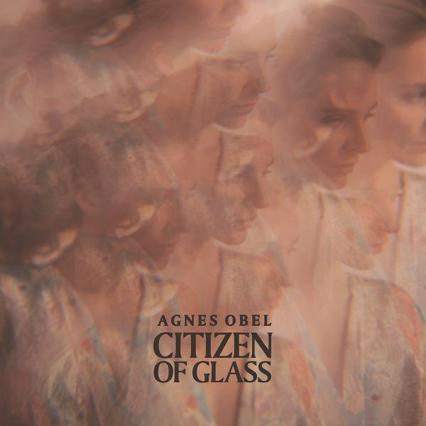 Agnes Obel - Citizen of Glass (Instrumental)