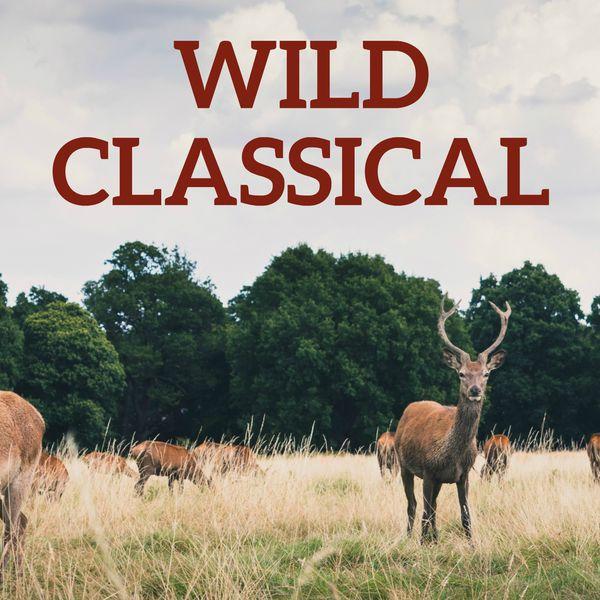 Richard Wagner - Wild Classical