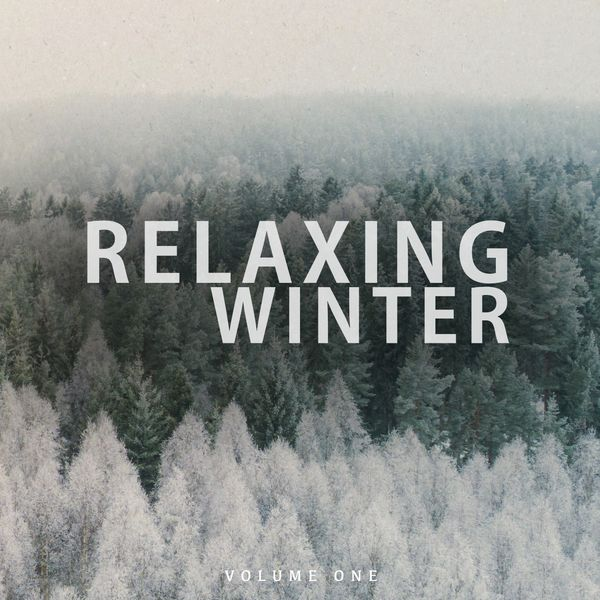 Various Artists - Relaxing Winter, Vol. 1 (Wonderful Calm & Chilled Electronic Music)