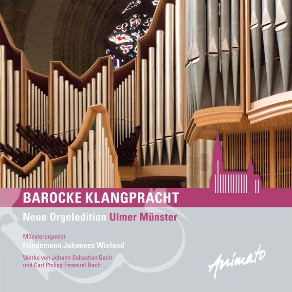 Friedemann Johannes Wieland - Barocke Klangpracht (J.S. and C.Ph.E Bach)