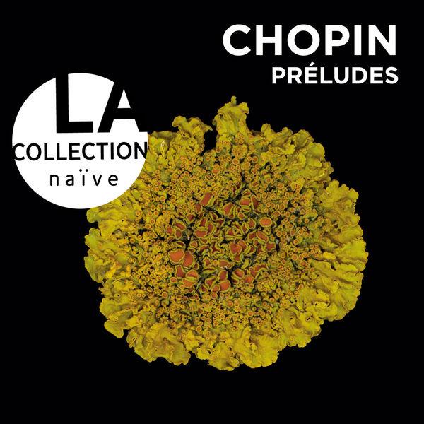 Grigory Sokolov - Frédéric Chopin : Préludes