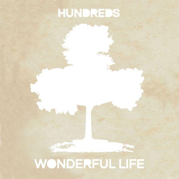 Hundreds Wonderful Life