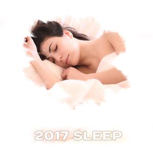2017 Sleep