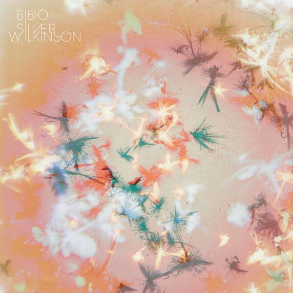 Bibio - Silver Wilkinson