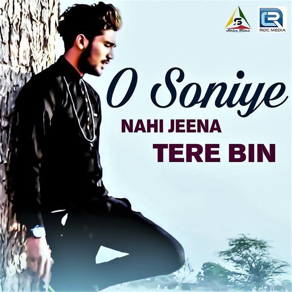 tere bina jeena nahi ve soneya song download