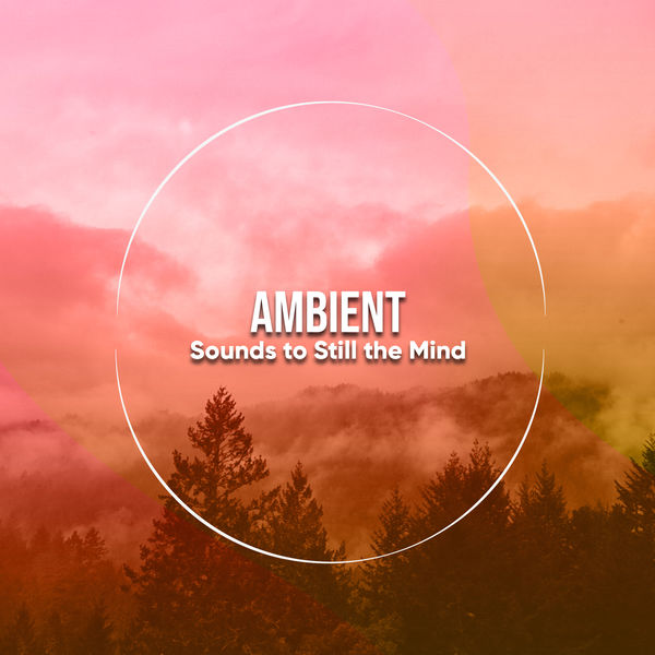 21 Relaxing, Ambient Sounds to Still the Mind | white noise