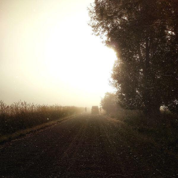 .EEhOU - Mist