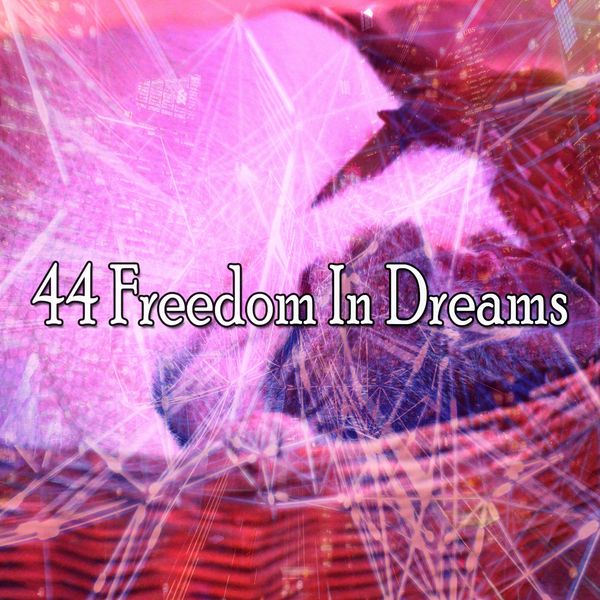 Relaxing Music Therapy - 44 Freedom in Dreams
