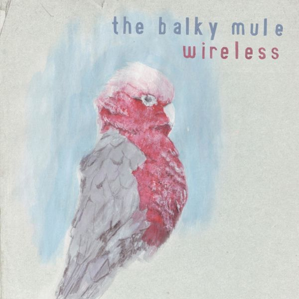The Balky Mule - Wireless
