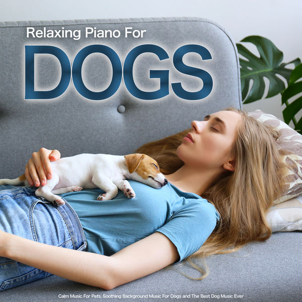 Dog Music - Relaxing Piano For Dogs: Calm Music For Pets, Soothing Background Music For Dogs and The Best Dog Music Ever