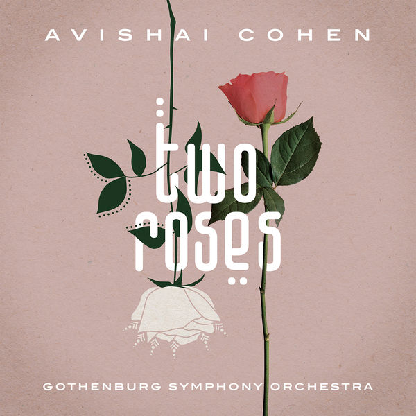 Avishai Cohen - Arab Medley