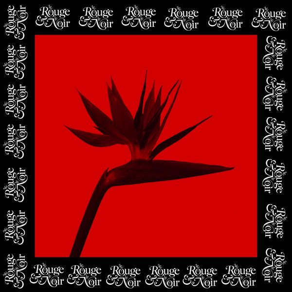 Le rouge & le noir