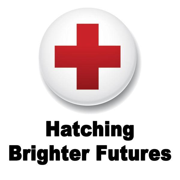 Jonathan Galland|Hatching Brighter Futures