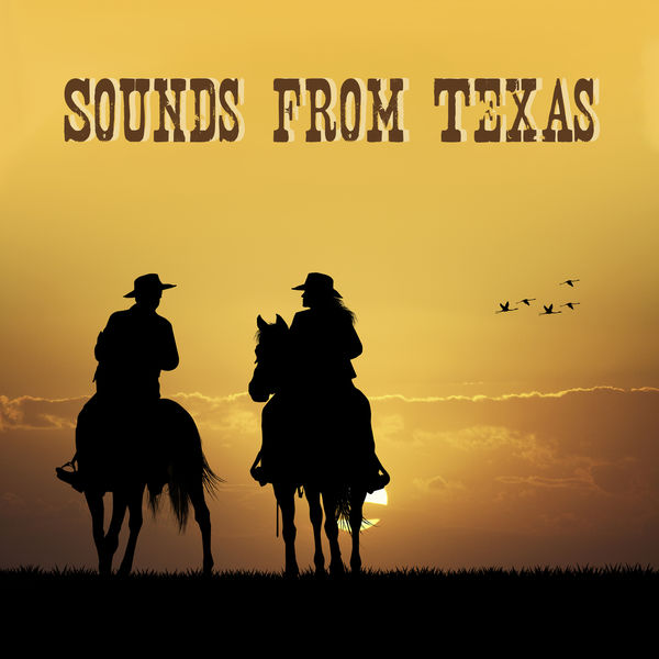 Wild Country Instrumentals - Sounds from Texas