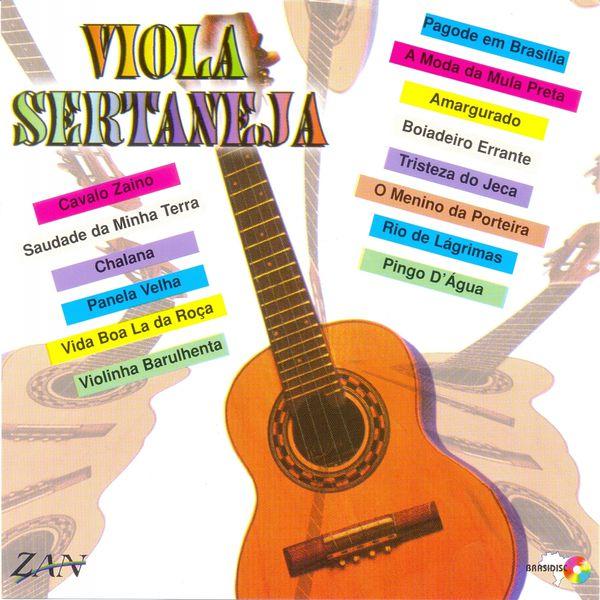 André Magalhães - Viola Sertaneja
