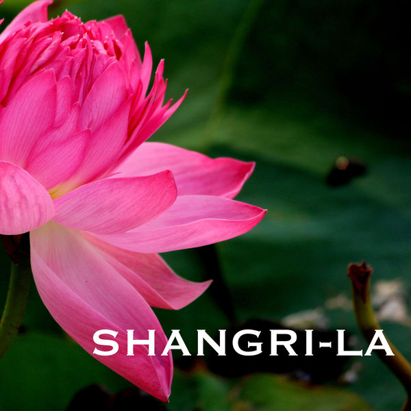 Indian Summer - Shangri-La - Traditional Indian Meditation Music, Folk Songs, Sitar Instrumental Background for Mindfulness Meditations
