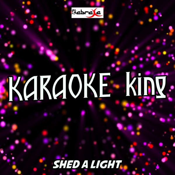 Karaoke King - Shed A Light (Karaoke Version) (Originally Performed by Robin Schulz, David Guetta and Cheat Codes)