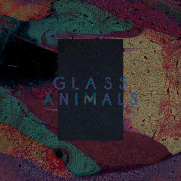 Glass Animals - Black Mambo / Exxus