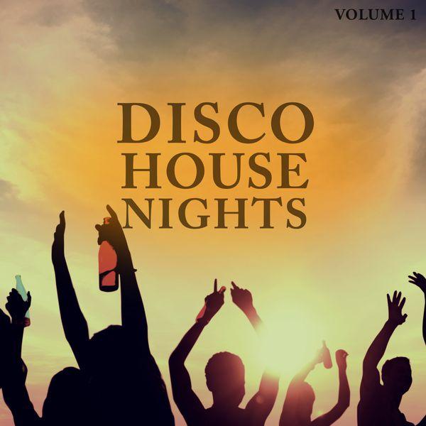 Various Artists - Disco House Nights, Vol. 1 (Wonderful Mix Of Smooth Disco & Club Disco Sound)