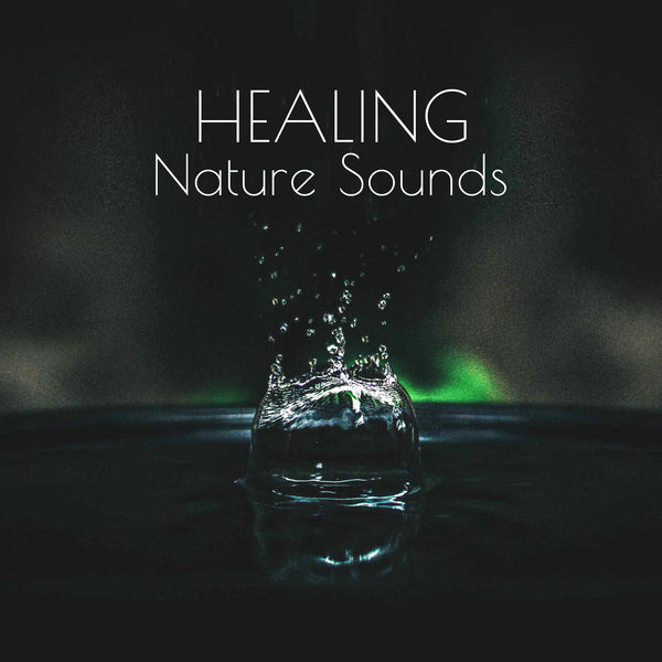 Ocean Sounds - Healing Nature Sounds – Soft Music to Relax, Inner Peace, Mind Control, Sounds to Meditate, Zen Garden