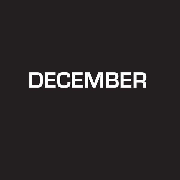 DSE David Schafer - December