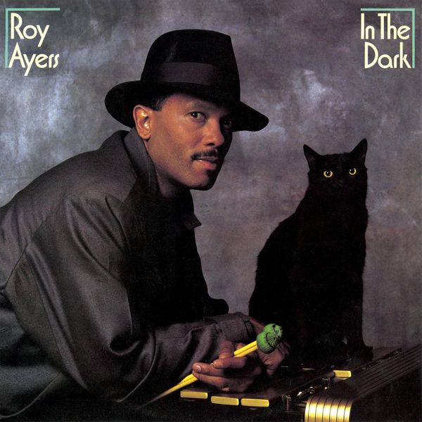 Roy Ayers In the Dark