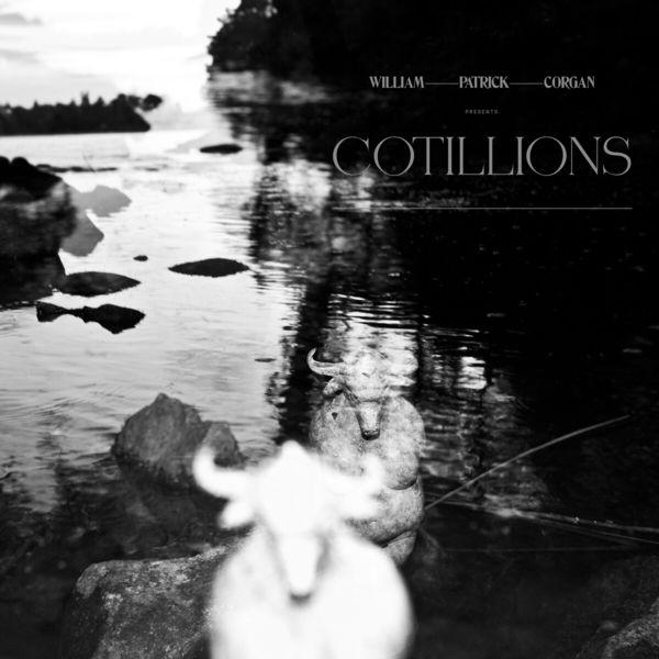 Billy Corgan - Cotillions