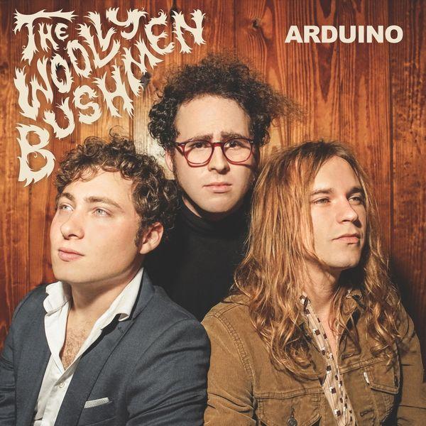 The Woolly Bushmen - Arduino