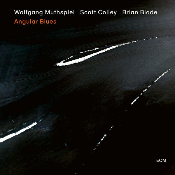 Wolfgang Muthspiel - Angular Blues