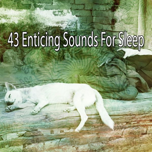 White Noise for Baby Sleep - 43 Enticing Sounds for Sleep