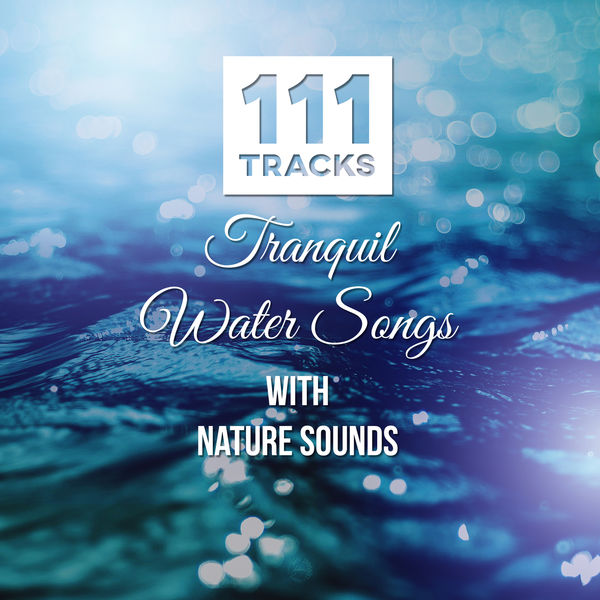 Calm Music Zone - 111 Tracks: Tranquil Water Songs with Nature Sounds: Healing Meditations, Music for Yoga, Reiki, Spa, Massage, New Age - Serenity Instrumental Music
