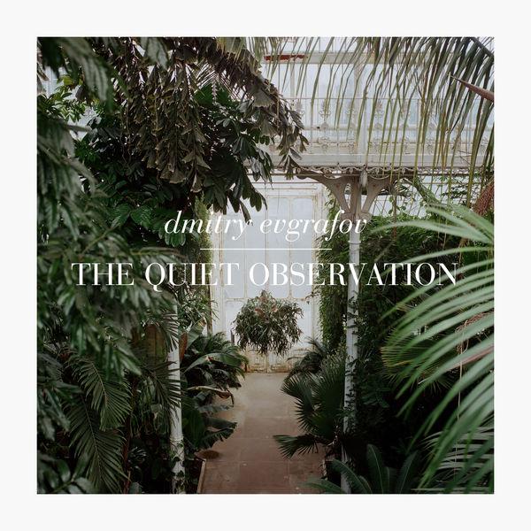 Dmitry Evgrafov - The Quiet Observation