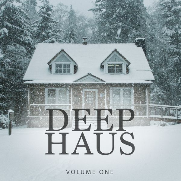 Deep haus vol 1 amazing winter deep house for home bar for Deep house bands