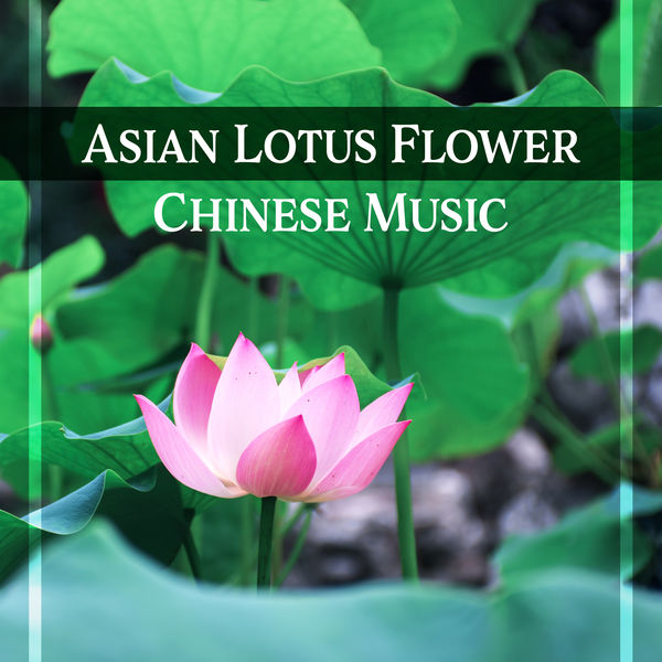 Asian lotus flower chinese music oriental sounds asian music asian music sanctuary asian lotus flower chinese music oriental sounds mightylinksfo