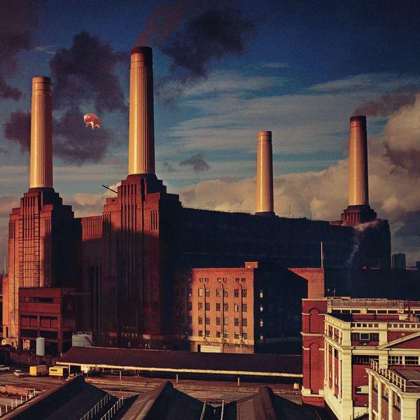 Pink Floyd - Animals (2011 Remastered Version)